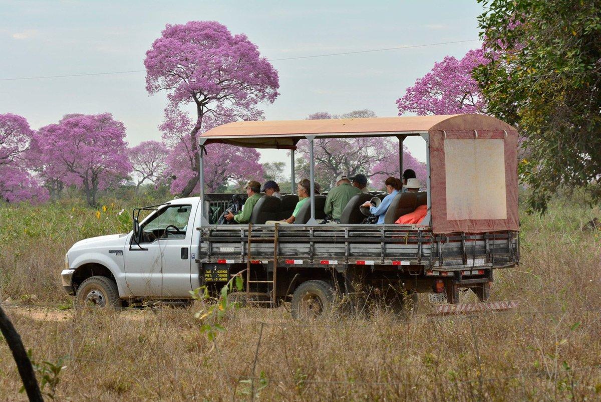 Pantanal-large