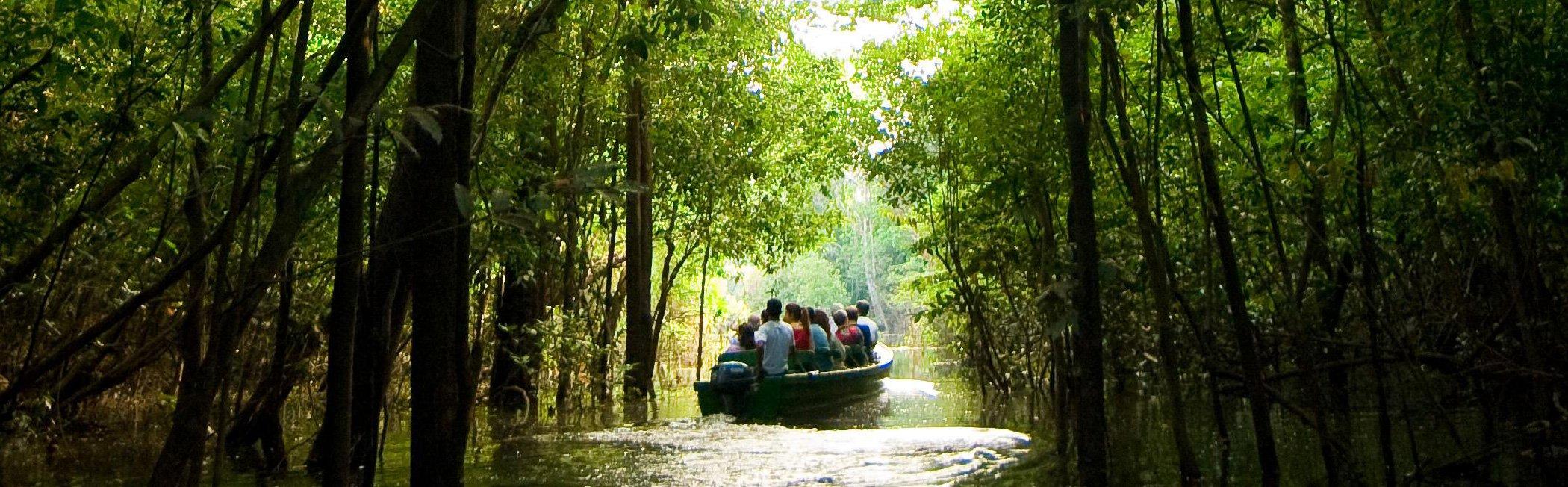 AMAZONIA-RIO-NEGRO
